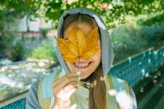 Beautiful Autumn Woman with Autumn Leaves on Fall Nature Background.  Stock Images