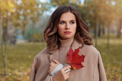 Beautiful autumn woman with long dark hair royalty free stock images