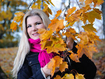 Beautiful autumn woman near yellow tree Royalty Free Stock Images