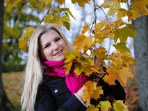 Beautiful autumn woman near yellow tree Stock Image