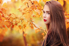 Beautiful Autumn Woman on Yellow Leaves Background. Outdoors Royalty Free Stock Photo