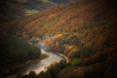 Beautiful autumn woods with river landscape Stock Photo