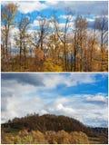 Beautiful autumn yellow orange collage images Stock Images