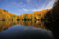 Beautiful autumnal lake Royalty Free Stock Photos