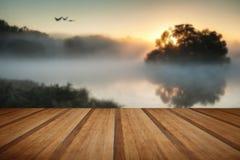 Beautiful Autumnal landscape image of birds flying over misty la Stock Photography