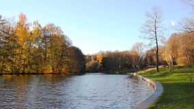 Beautiful  autumnal park and river. Full HD stock video footage