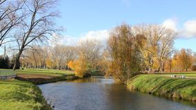 Beautiful  autumnal park and river stock video