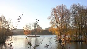 Beautiful  autumnal park and river. Full HD. Belarus, Minsk stock footage