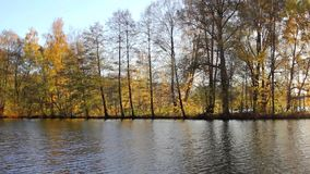 Beautiful  autumnal park and river. Full HD. Belarus, Minsk stock video footage