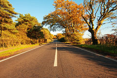 Beautiful autumnal road Stock Image
