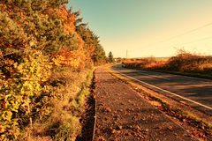 Beautiful autumnal road Stock Photography