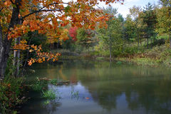 Beautiful Autumnal Scene. This is a colorful autumnal scene in Quebec, Canada Stock Images