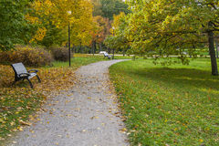 Beautiful autumnal scenery. Foliage in the autumn park Kadriorg Royalty Free Stock Images