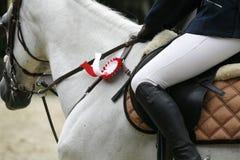 Beautiful award-winning horse galloping in the arena Stock Photo