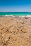 Beautiful azure red sea with waves and rocks in Egypt Stock Photo