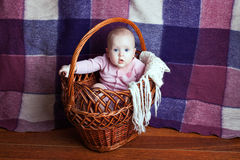 Beautiful babe in a basket Stock Images