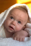 Beautiful Baby Royalty Free Stock Photo