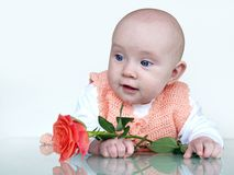 Beautiful baby. Girl portrait on grey background Royalty Free Stock Photos