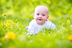Beautiful baby in a blooming spring apple garden. Adorable little happy smiling baby boy playing in a blooming apple garden between beautiful trees with white Stock Images