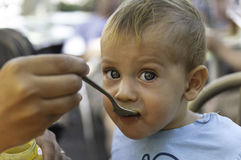 Beautiful baby boy is being feed with a spoon Royalty Free Stock Photos