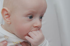 Beautiful baby boy, four months old Stock Image