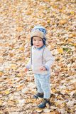Beautiful baby boy posing at the park. Autumn season.  stock photography