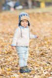 Beautiful baby boy posing at the park. Autumn season.  stock photo