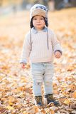 Beautiful baby boy posing at the park. Autumn season.  royalty free stock images