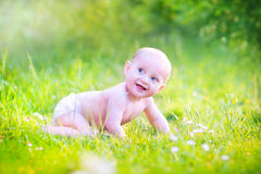 Beautiful baby crawling in the garden Stock Image