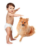 Beautiful baby in diaper with a brown dog Stock Photos