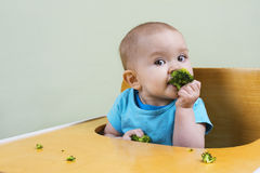 Beautiful baby eating broccoli. Cute baby eating broccoli by gerself Stock Photos