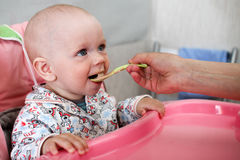 Beautiful baby eats porridge from mom's hand. He is sitting on a pink children' chair. Royalty Free Stock Photo