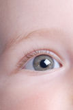 Beautiful baby eye. Close up stock image