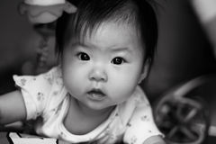 Beautiful Baby Eyes Stock Image