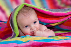 Beautiful baby with finger in mouth Royalty Free Stock Photography