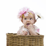 Beautiful baby girl in a basket Stock Photo