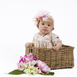 Beautiful baby girl in a basket Stock Image