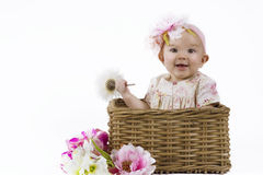 Beautiful baby girl in a basket Stock Photos