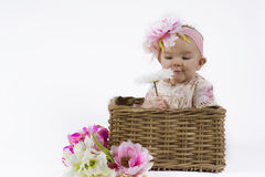 Beautiful baby girl in a basket. Cute baby in a flower dress sitting in a flower basket Stock Image