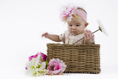 Beautiful baby girl in a basket. Cute baby in a flower dress sitting in a flower basket Royalty Free Stock Images