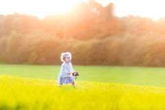 Beautiful baby girl in field on sunny autumn evening Royalty Free Stock Photo