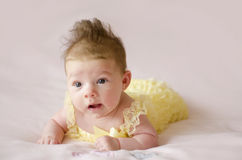 Beautiful baby girl lying on tummy Royalty Free Stock Photography