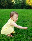 Beautiful baby girl picking flowers Royalty Free Stock Images