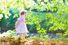 Beautiful baby girl in pink dress walking next to  Stock Images