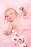 Beautiful Baby Girl On Pink Fabric Stock Images
