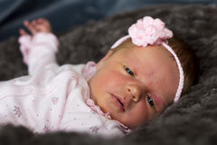 Beautiful baby girl with pink flower on dark background Royalty Free Stock Photos
