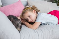 Beautiful baby girl on sofa near a black vietnamese piglet. Concept of the Chinese New Year 2019 of the Pig.Mini piggy royalty free stock photography
