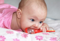 Beautiful baby girl sucking the toy Royalty Free Stock Photos