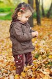Beautiful baby girl walks in autumn forest Stock Images