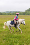 Beautiful baby girl on a white horse galloping Stock Image